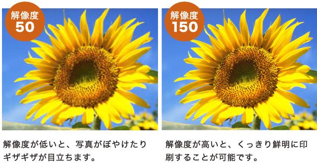 解像度が低いと、写真がぼやけたりギザギザが目立ちます。解像度が高いと、くっきり鮮明に印刷することが可能です。